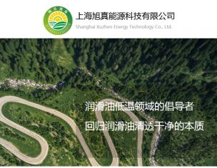 上海旭真能源科技有限公司
